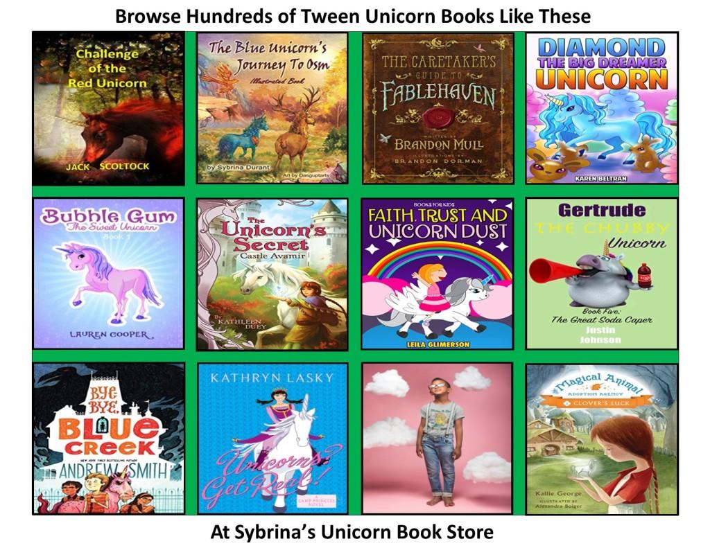 http://www.sybrinablueunicornbook.com/index_5Unicorn_Books__For_Middle_Kids.htm